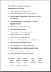 a sample worksheet